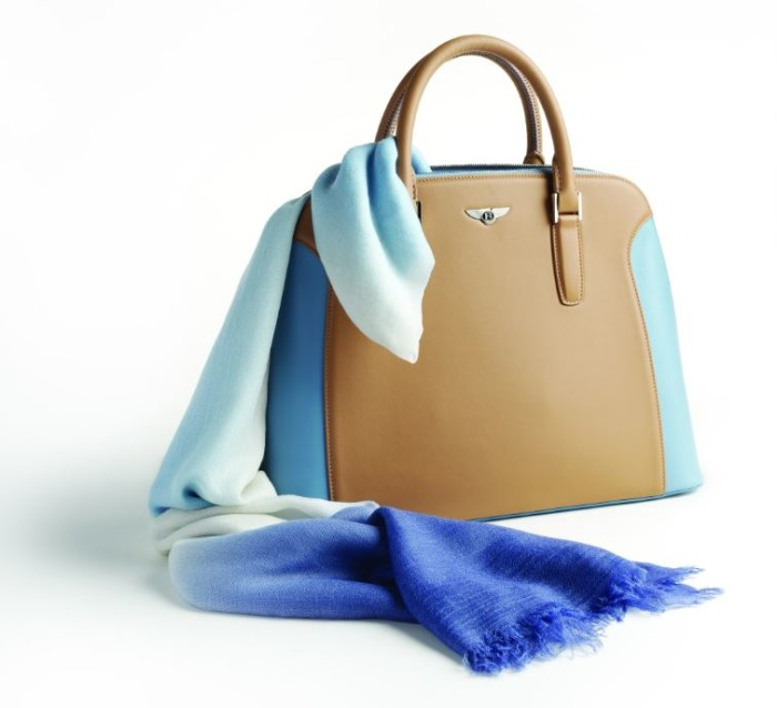 Bentley Cashmere Scarf and Bag 3