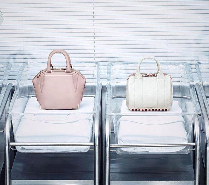 Alexander Wang Mini Bags