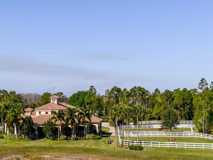 Weise Jupiter Equestrian Estate
