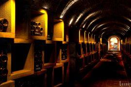 Champagne-Bollinger Galerie 1829