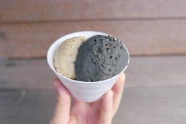 Gomaya Kuki Sesame Ice Cream