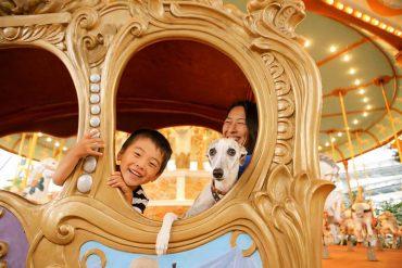 Fuji-Q Highland Dog Rides