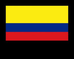 Servicios Empresariales Colombia