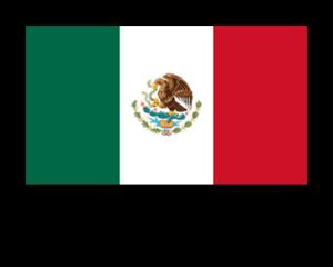 Importar Mercancías México