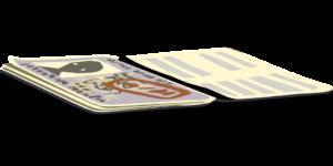 Panama Residence: Friendly Nations Visa