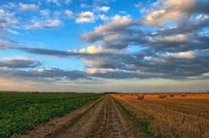 australia america latina agricultura