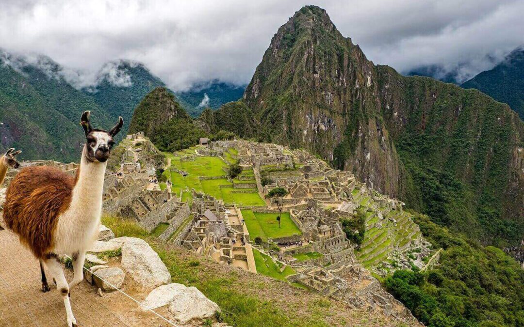 How to Set Up a Company or Corporation in Peru – Lima Lawyer