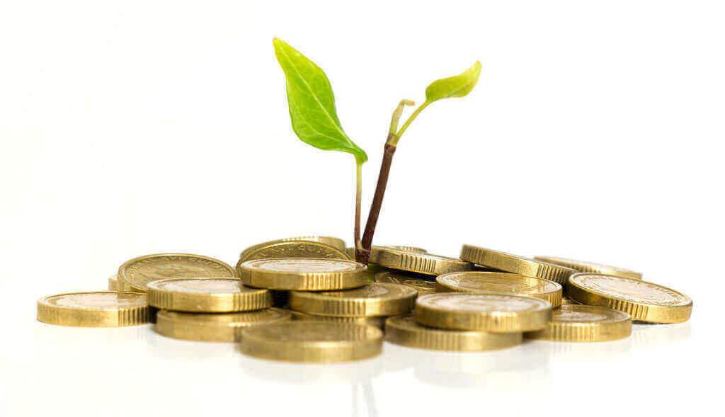 Requisitos de inversión