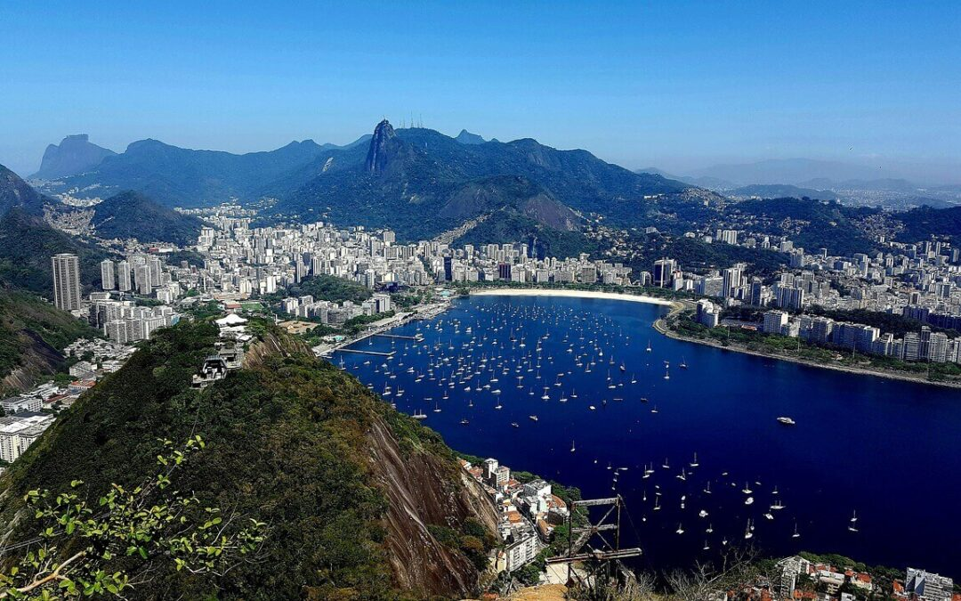 Corporate Lawyer: The Steps to Form a Legal Entity in Brazil