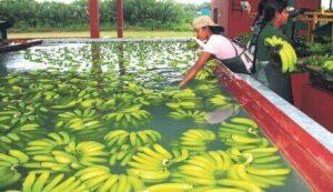 Ecuador Natural Resources