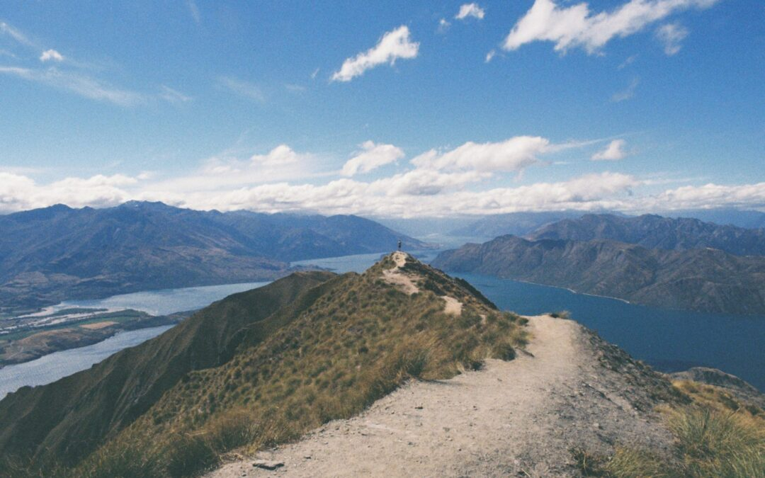 Why do Business in New Zealand?