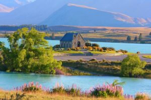 Nueva Zelanda oportunidades de negocio