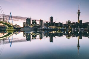 Pros and Cons of Business Structures in New Zealand