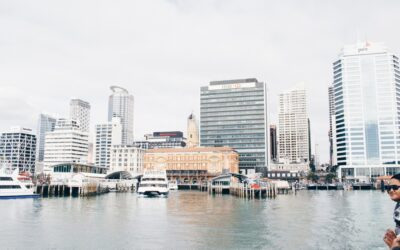 Politics and Business: What Does It Mean For New Zealand in 2019?