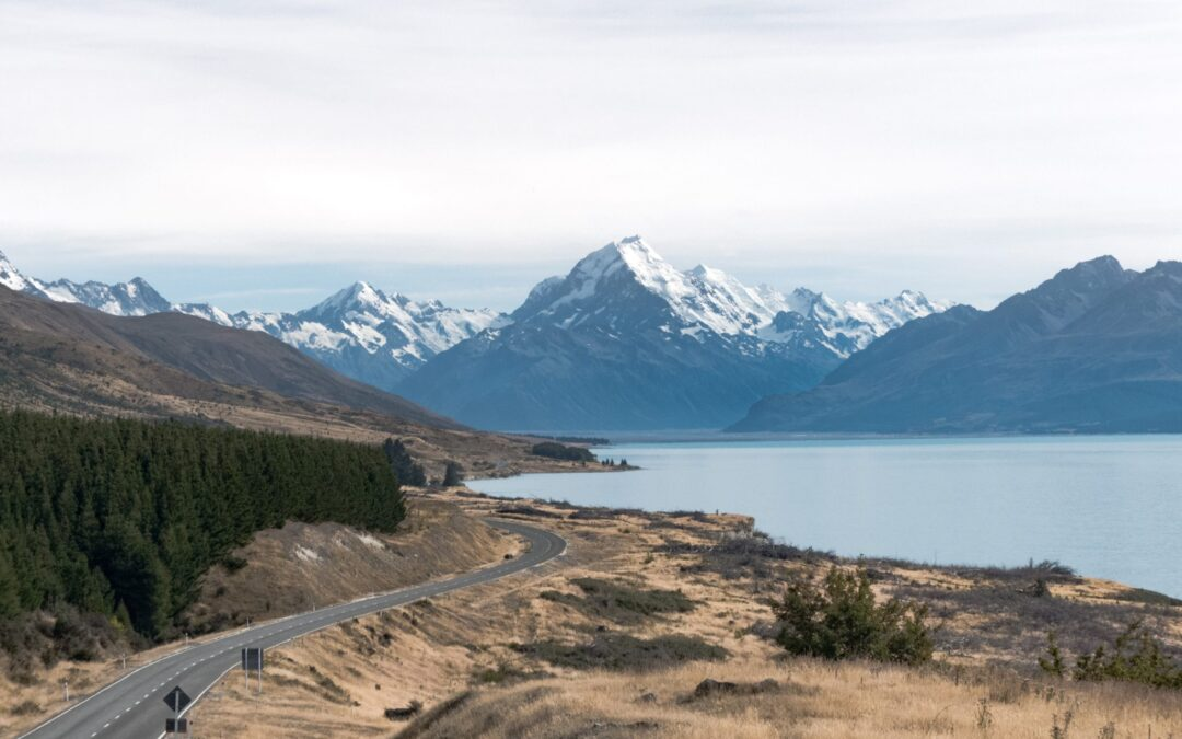 Setting Up a Business in New Zealand