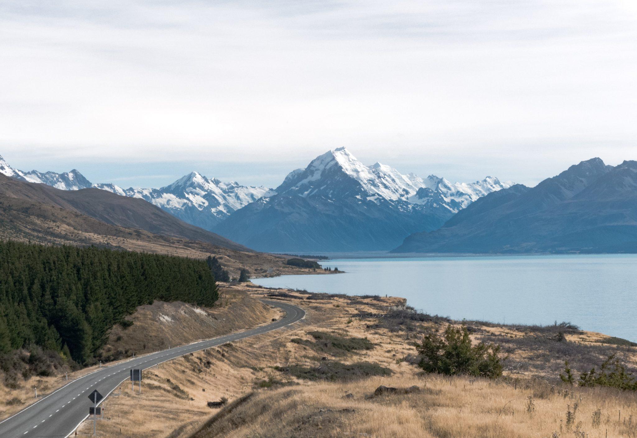 Estableciendo un Negocio en Nueva Zelanda