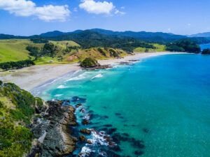 Benefits companies New Zealand