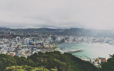 Capital Gains Tax Scrapped: Outcomes for New Zealand Business