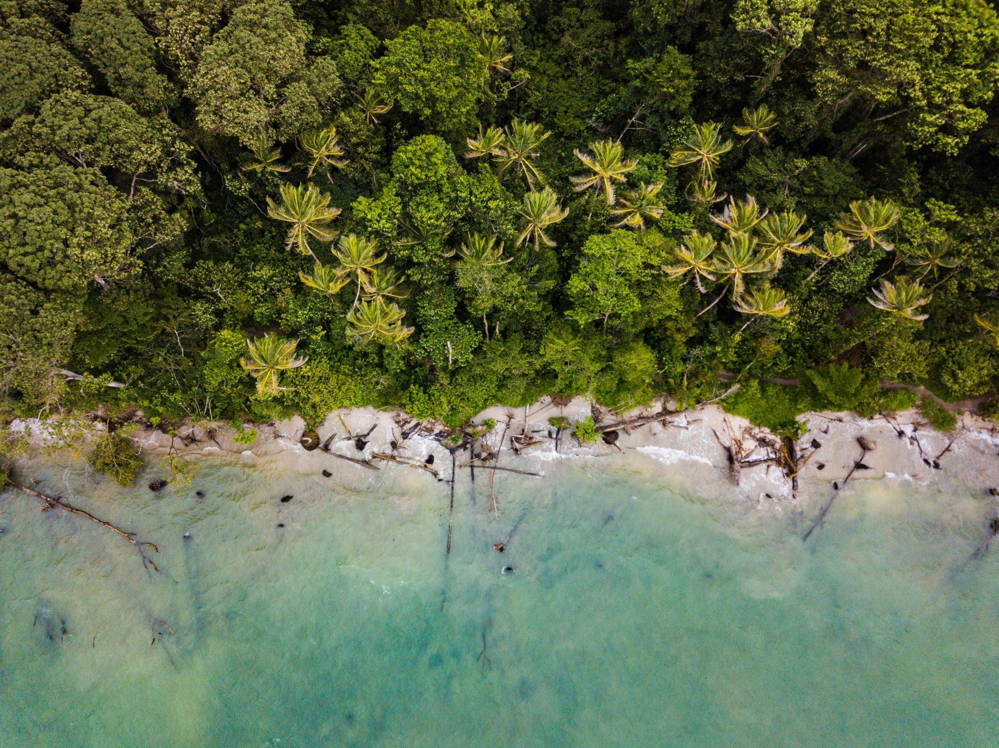 ¿Cómo Afectarán los Cambios Legislativos de Costa Rica a su Negocio?