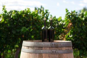new zealand wine exports
