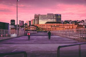'Liveability' is the niche Wellington capitalizes on to attract local and foreign investors and businesses for life.