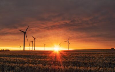 Renewable Energy Industries in Australia and New Zealand