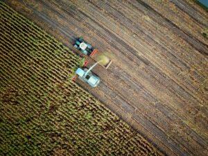 Agriculture Bolivia