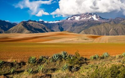 Corporate Tax Considerations in Bolivia