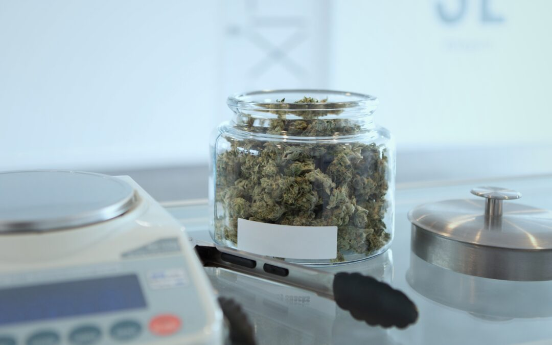 Crucial Steps for Starting Your Colombian Cannabis Business