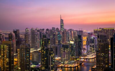Commercial Opportunities in Increased Dubai-Brazil Trade