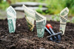 dollar planted as investment
