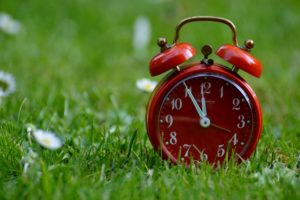 clock sitting in grass