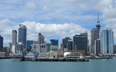 5 Steps to Forming an LLC in New Zealand