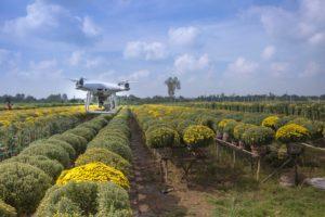 Tecnología de agricultura en América Central