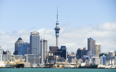 How to Liquidate a Company in New Zealand