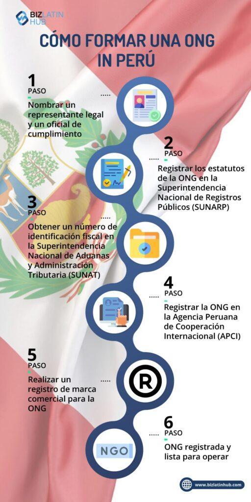 infografia pasos para formar una ONG en Peru