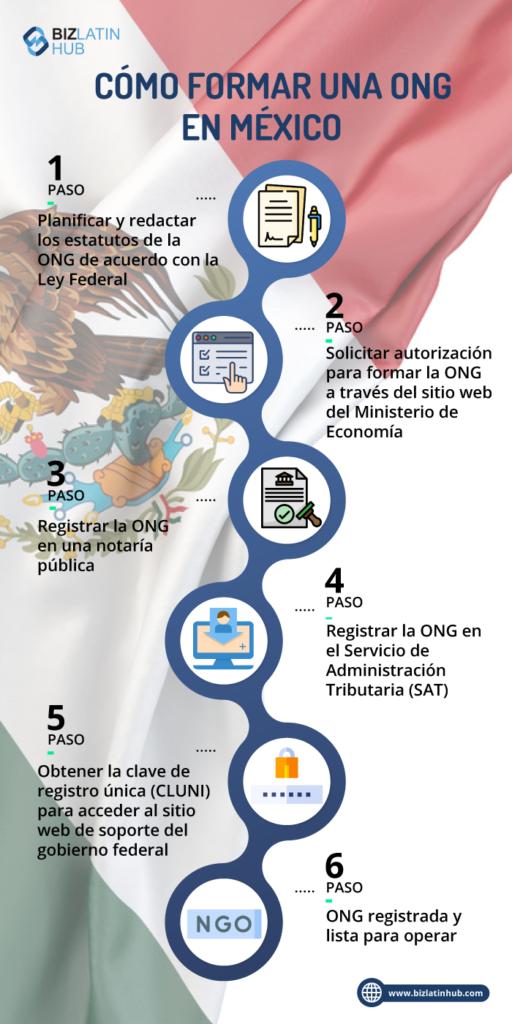 infografia pasos para formar ong en México
