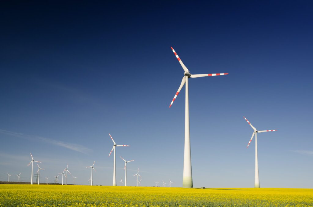 Wind energy field in Chile,