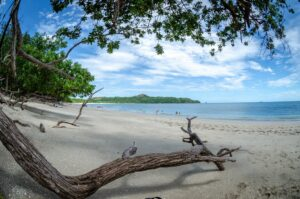 Playa Conchal in Costa Rica, where companies must comply with financial regulatory compliance