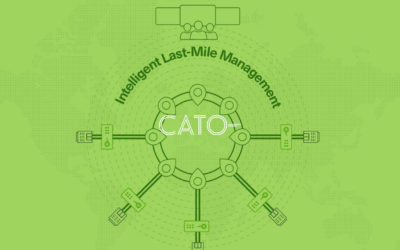 Cato Networks: How SD-WAN Conquers Last Mile Limitations