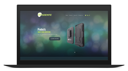 Wisdenite Website