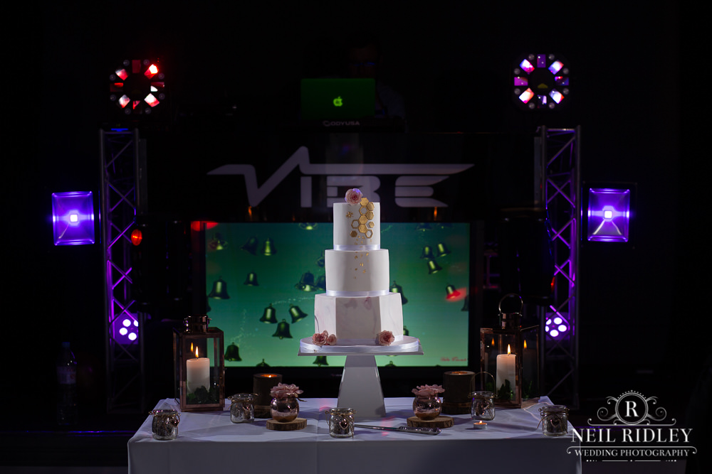 The Villa Hotel Wedding Photographer Cake ready for cake cut