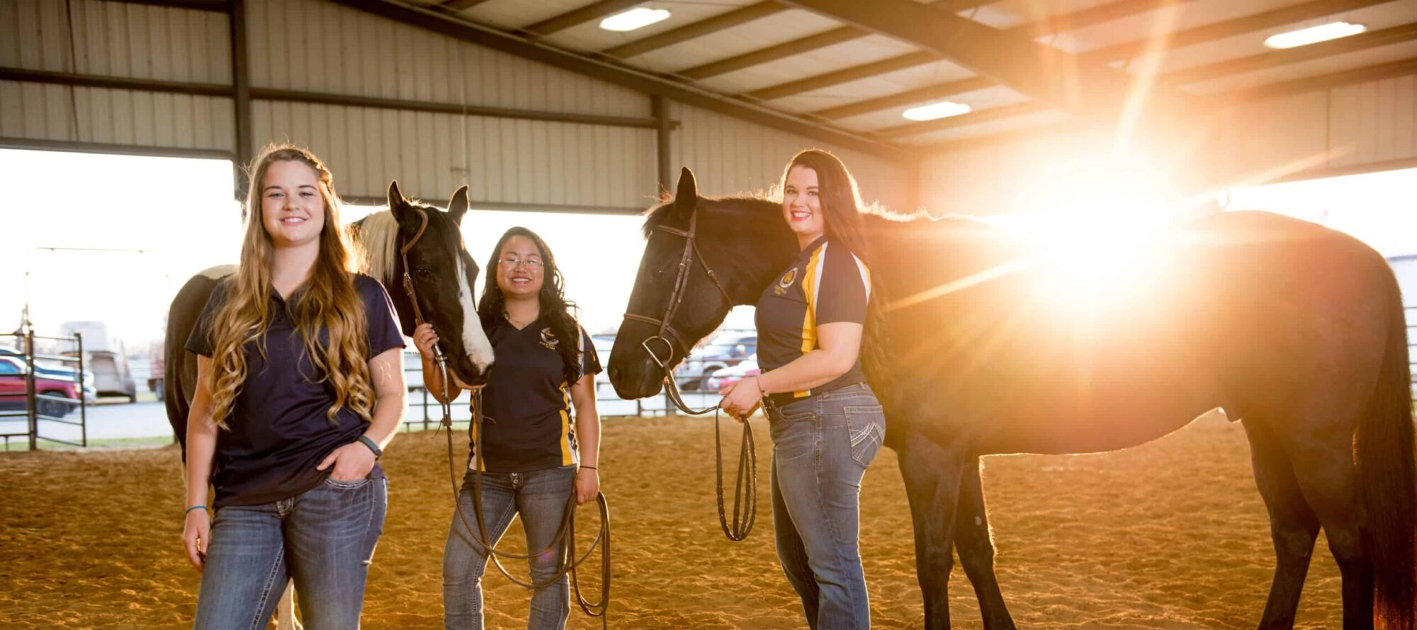 Two women holding horses and other women .background 'sunshine'