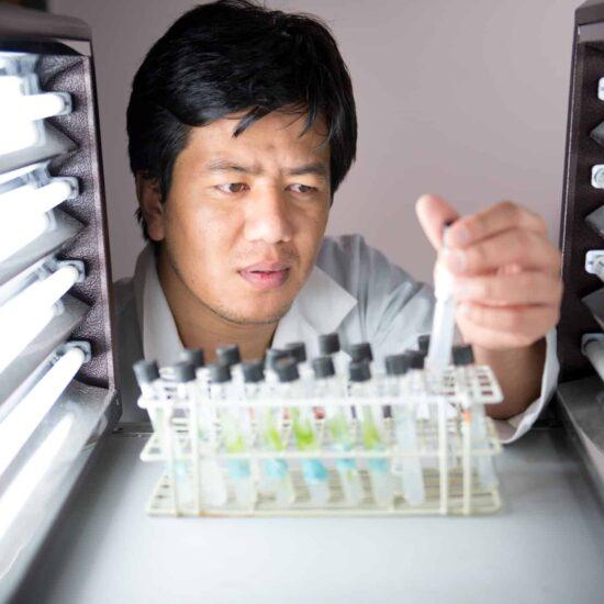 Chemist inspecting vials under strong light