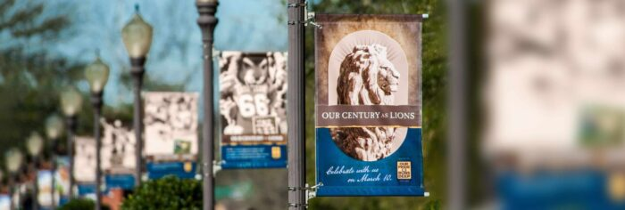 17022-Our-Century-as-Lions-1229-thin