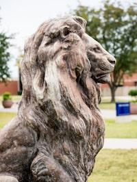 17022-Our Century as Lions-3161 (1) copy
