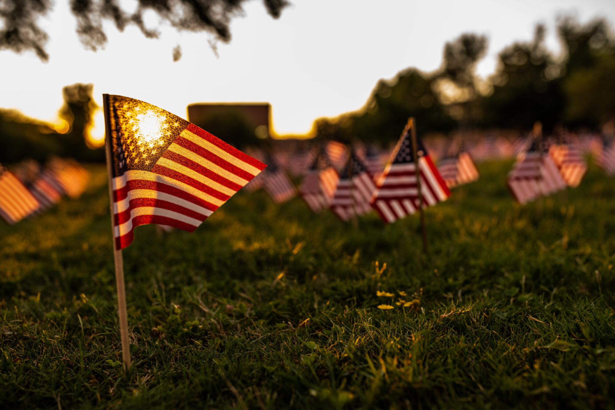 M20005-9-11-Memorial-Flags-1204-scaled-1
