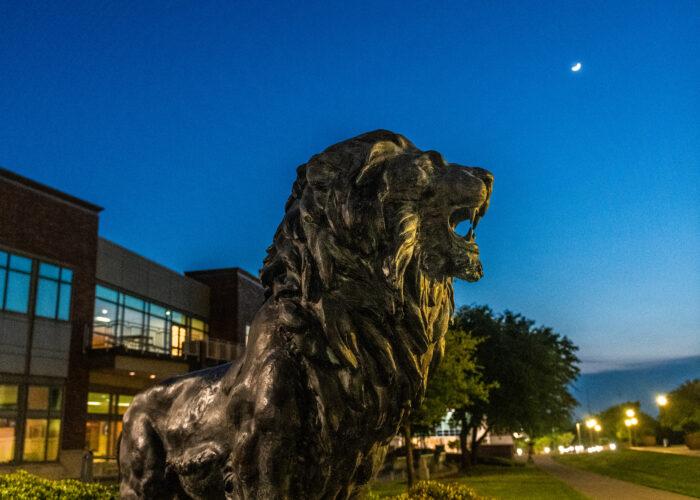 Lion statue at night