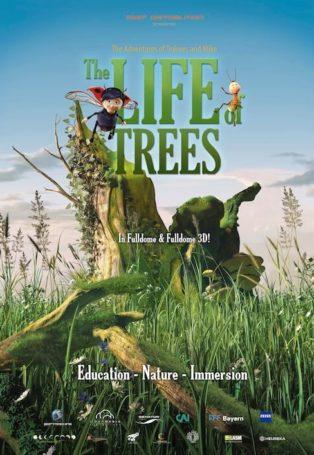 lifeOfTrees_314_455