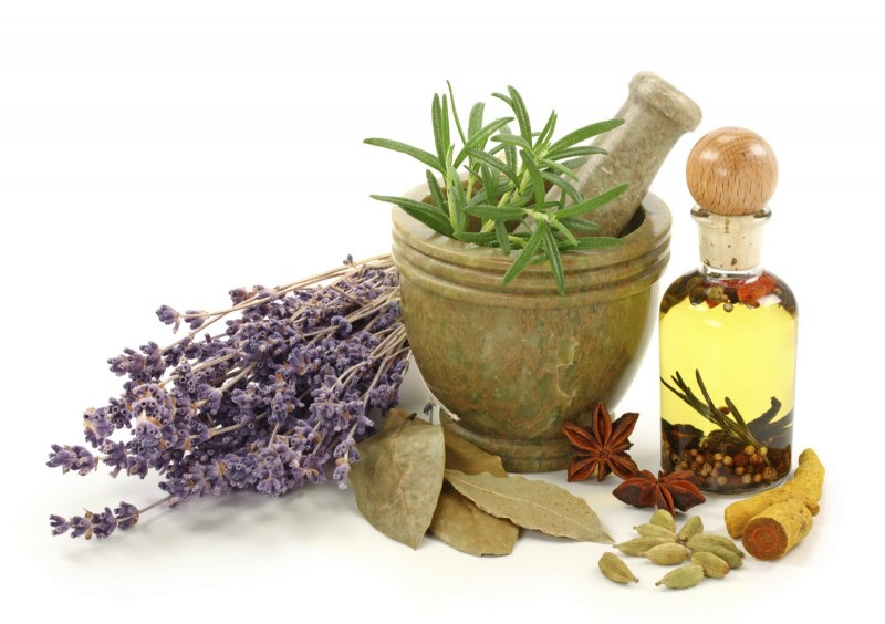 The Methods and History of Homeopathy